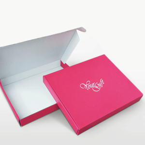 Professional China Manufacturer Printing Kraft Folding Mailer Shipping Boxes for Apparel