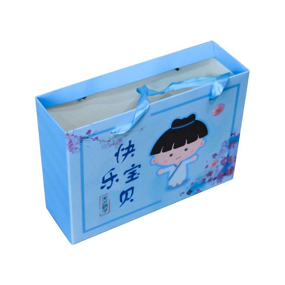 Paper Packaging Gift Box with Paper Carrying Bag China Wholesale