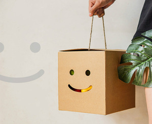 Recyclable Corrugated Kraft Paper Eco Friendly Shopping Boxes for Vegetable and Fruit