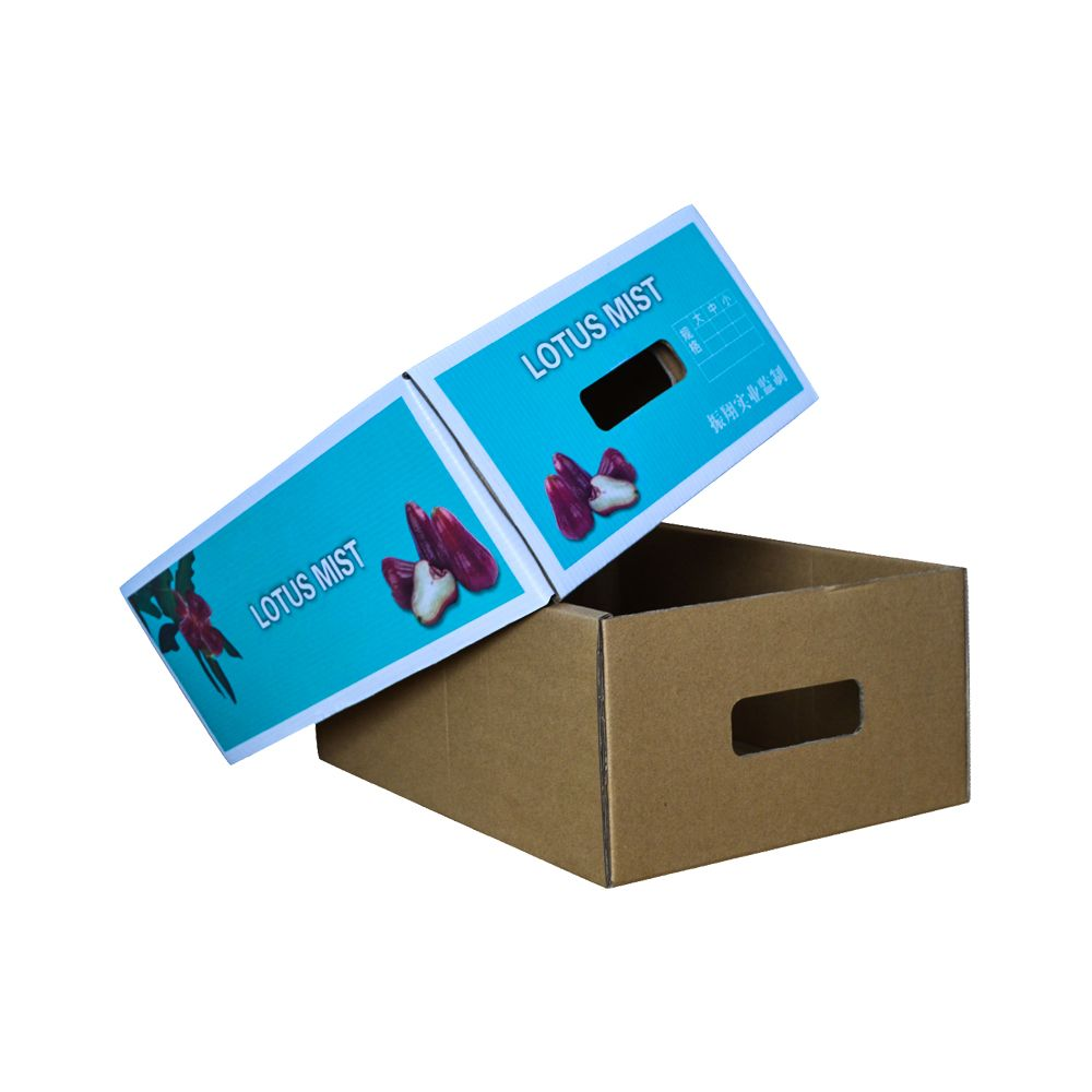 Fresh Fruits Strong Corrugated Paper Packaging Boxes China Wholesale