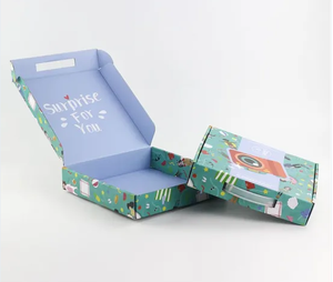 Custom Printed Packing Carton Corrugated Shipping Postal Boxes