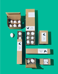 Professional Corrugated Kraft Boxes for Easter Googse Egg China Supplier